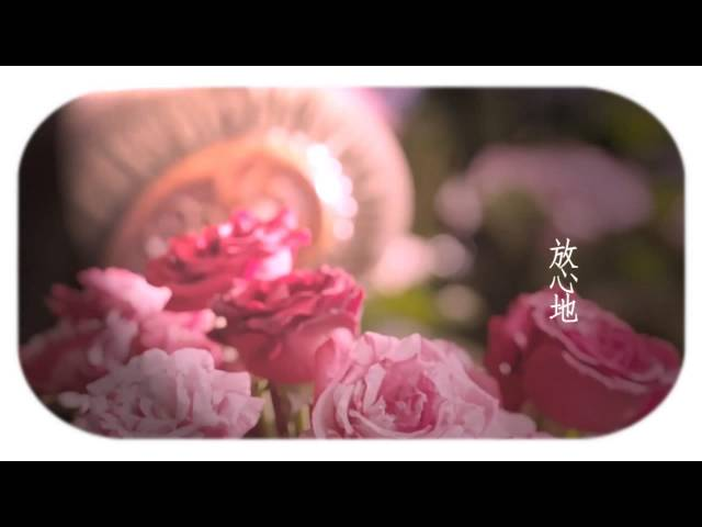 [Lyric Translation] Hebe Tien 田馥甄 – The Most Important Thing In Life 終生大事